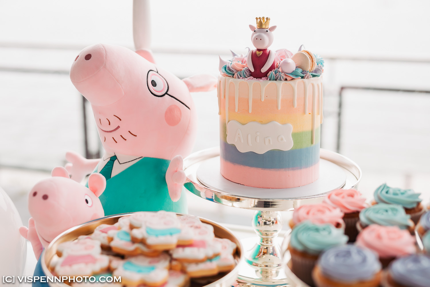 Melbourne Baby Family Birthday Party Photographer 墨尔本 百日宴 满月宴 周岁宴 摄影 VISPENN 5D5 7935