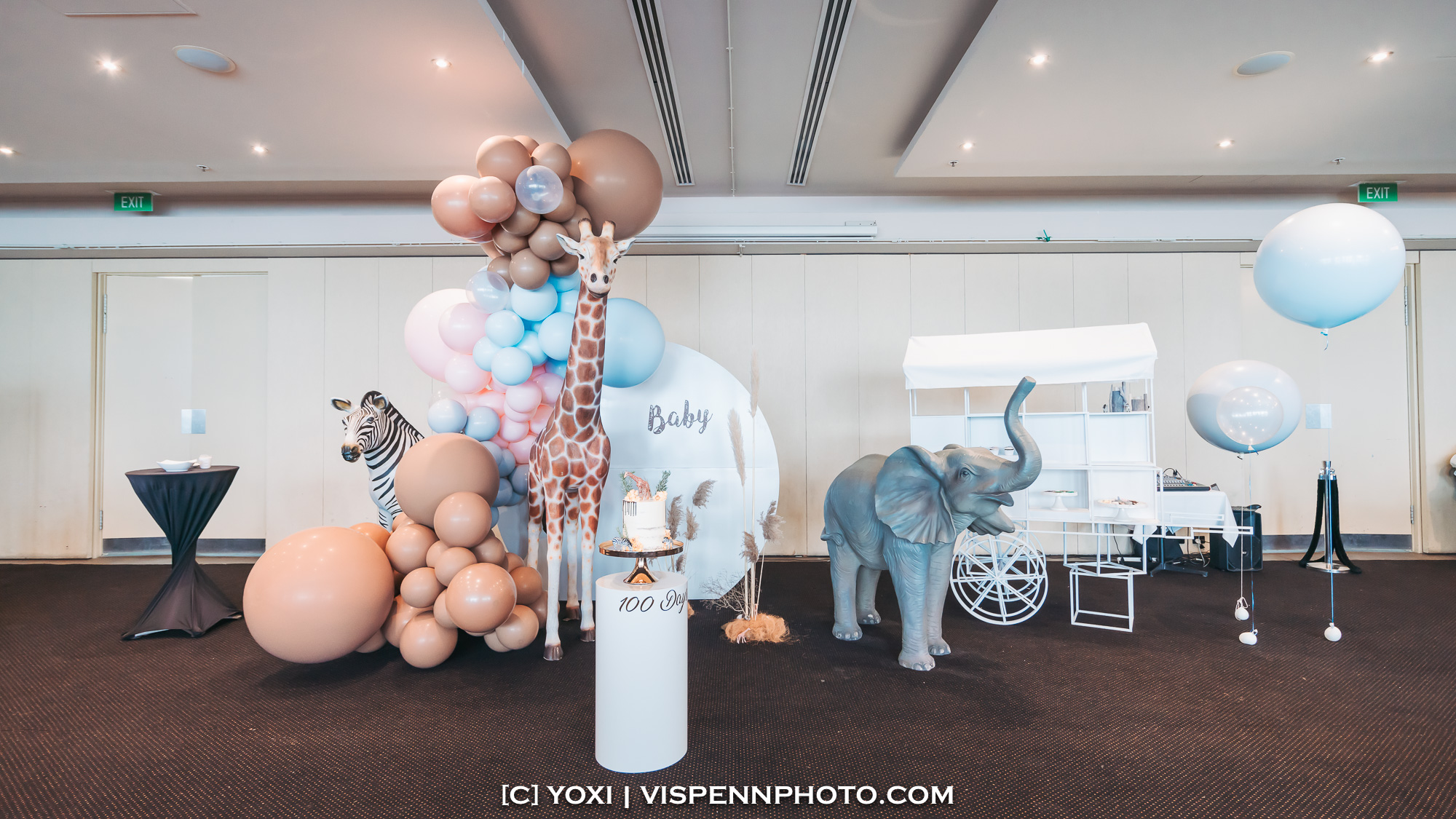 Melbourne Baby Family Birthday Party Photographer 墨尔本 百日宴 满月宴 周岁宴 摄影 VISPENN VISPENN 0297