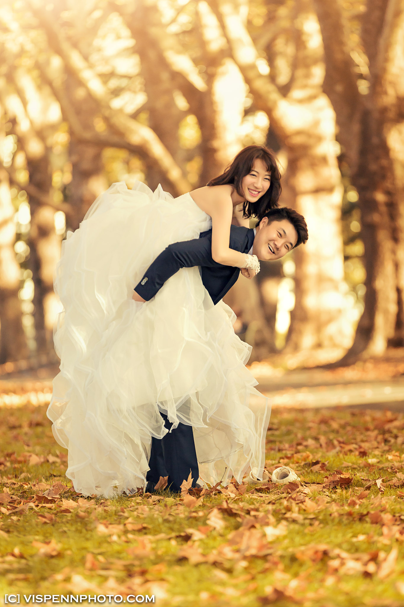 PRE WEDDING Photography Melbourne VISPENN 墨尔本 婚纱照 结婚照 婚纱摄影 5D1 2898