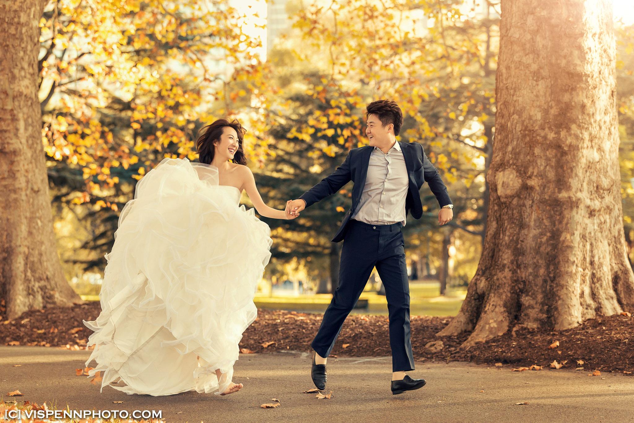PRE WEDDING Photography Melbourne VISPENN 墨尔本 婚纱照 结婚照 婚纱摄影 5D1 3003