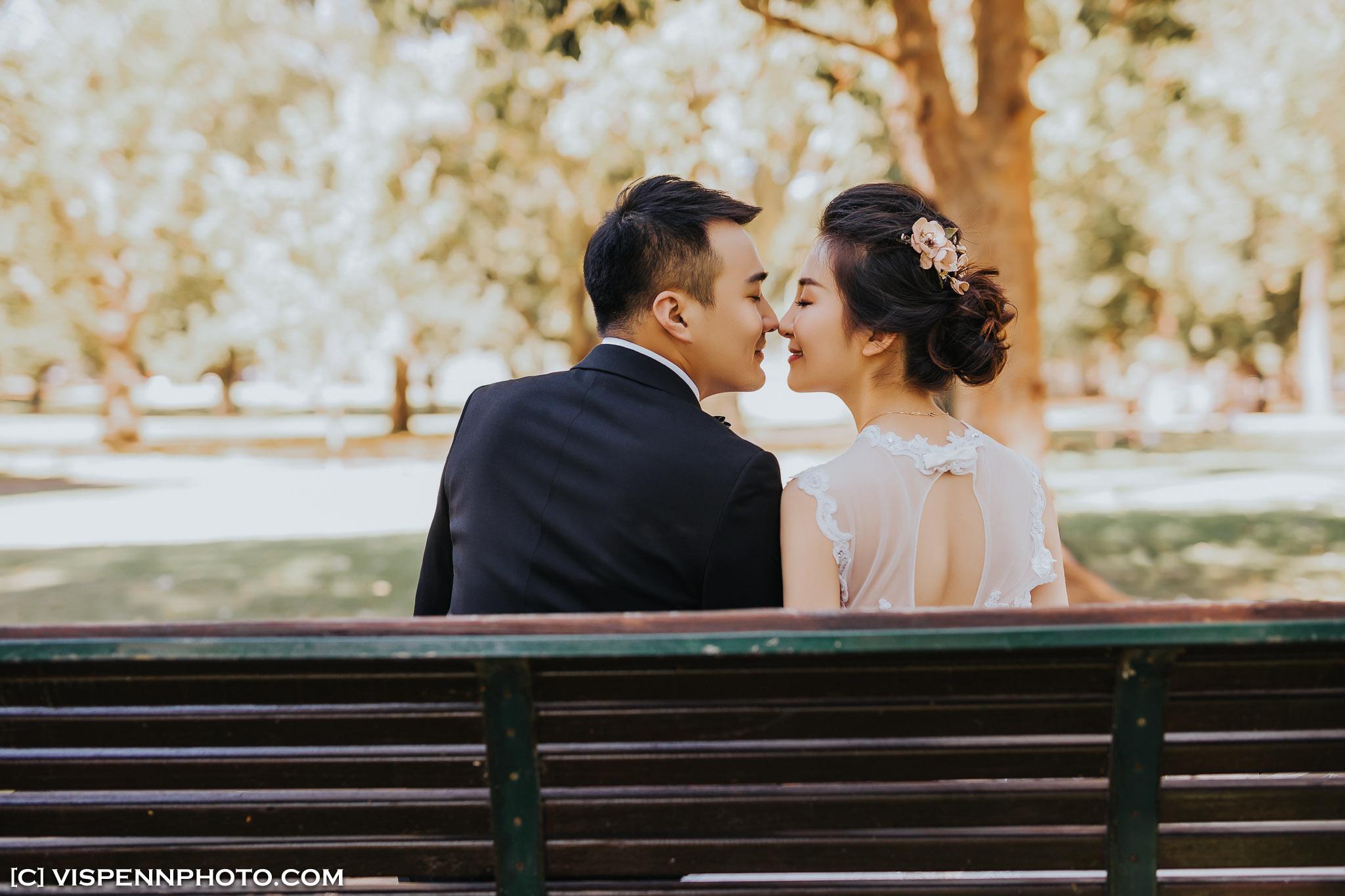 PRE WEDDING Photography Melbourne VISPENN 墨尔本 婚纱照 结婚照 婚纱摄影 5D5 8399