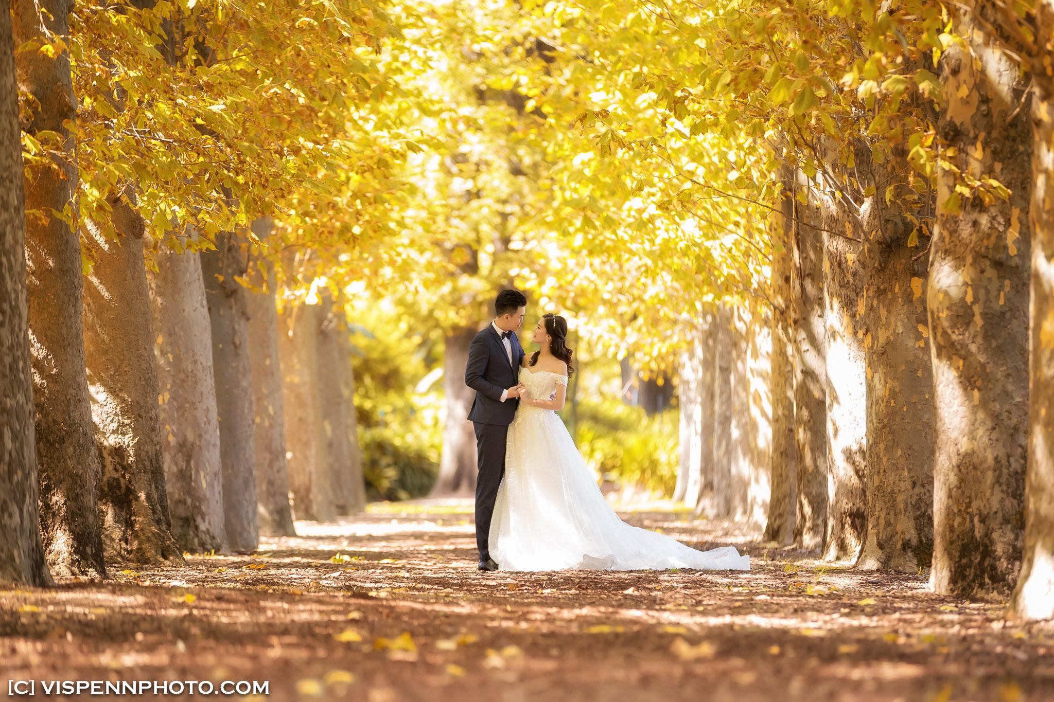 PRE WEDDING Photography Melbourne VISPENN 墨尔本 婚纱照 结婚照 婚纱摄影 AndyCHEN 1360 1DX VISPENN