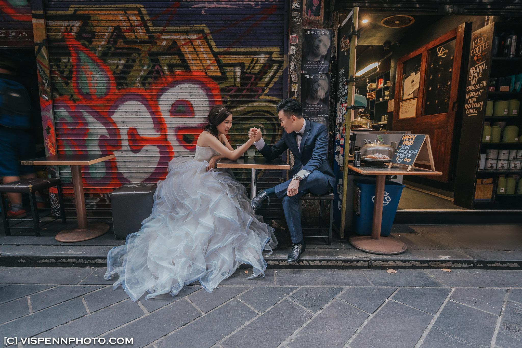 PRE WEDDING Photography Melbourne VISPENN 墨尔本 婚纱照 结婚照 婚纱摄影 AndyCHEN 5787 A7R2 VISPENN
