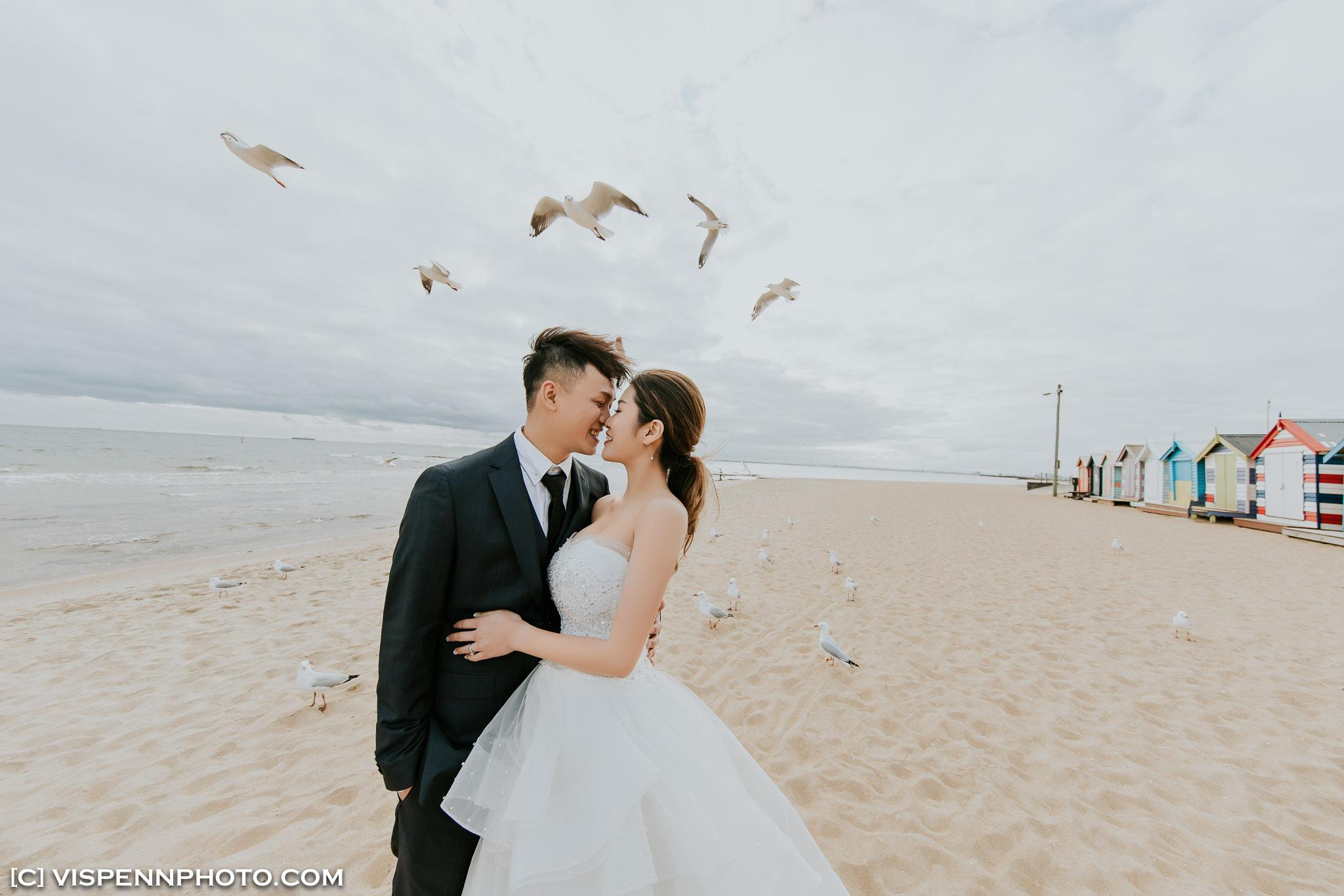 PRE WEDDING Photography Melbourne VISPENN 墨尔本 婚纱照 结婚照 婚纱摄影 GiGi 7837 EOSR VISPENN
