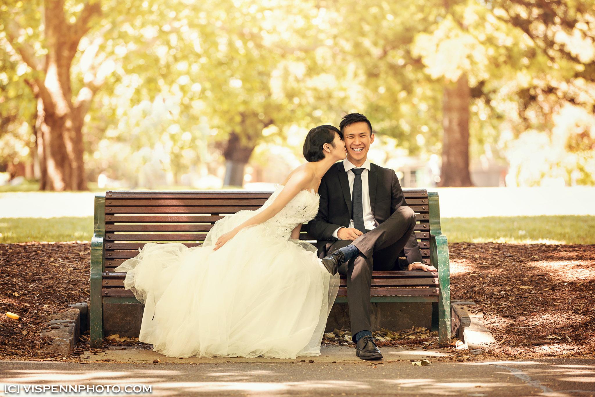 PRE WEDDING Photography Melbourne VISPENN 墨尔本 婚纱照 结婚照 婚纱摄影 Ivy PreWedding 1724