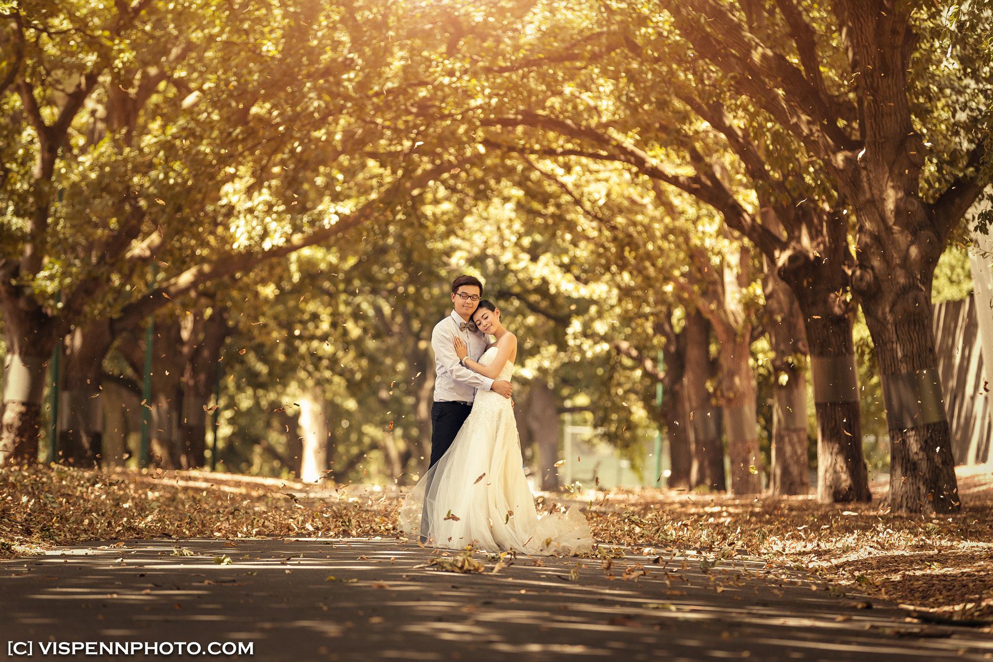 PRE WEDDING Photography Melbourne VISPENN 墨尔本 婚纱照 结婚照 婚纱摄影 KarenCai 2560 1
