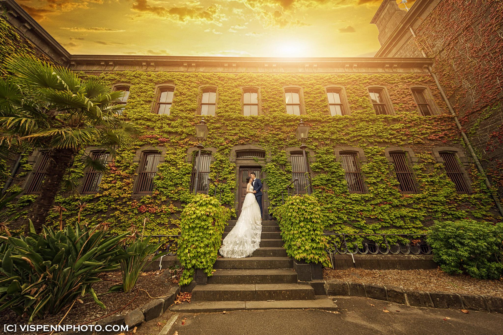 PRE WEDDING Photography Melbourne VISPENN 墨尔本 婚纱照 结婚照 婚纱摄影 VISPENN ZhouWenPreWedding 8727 1