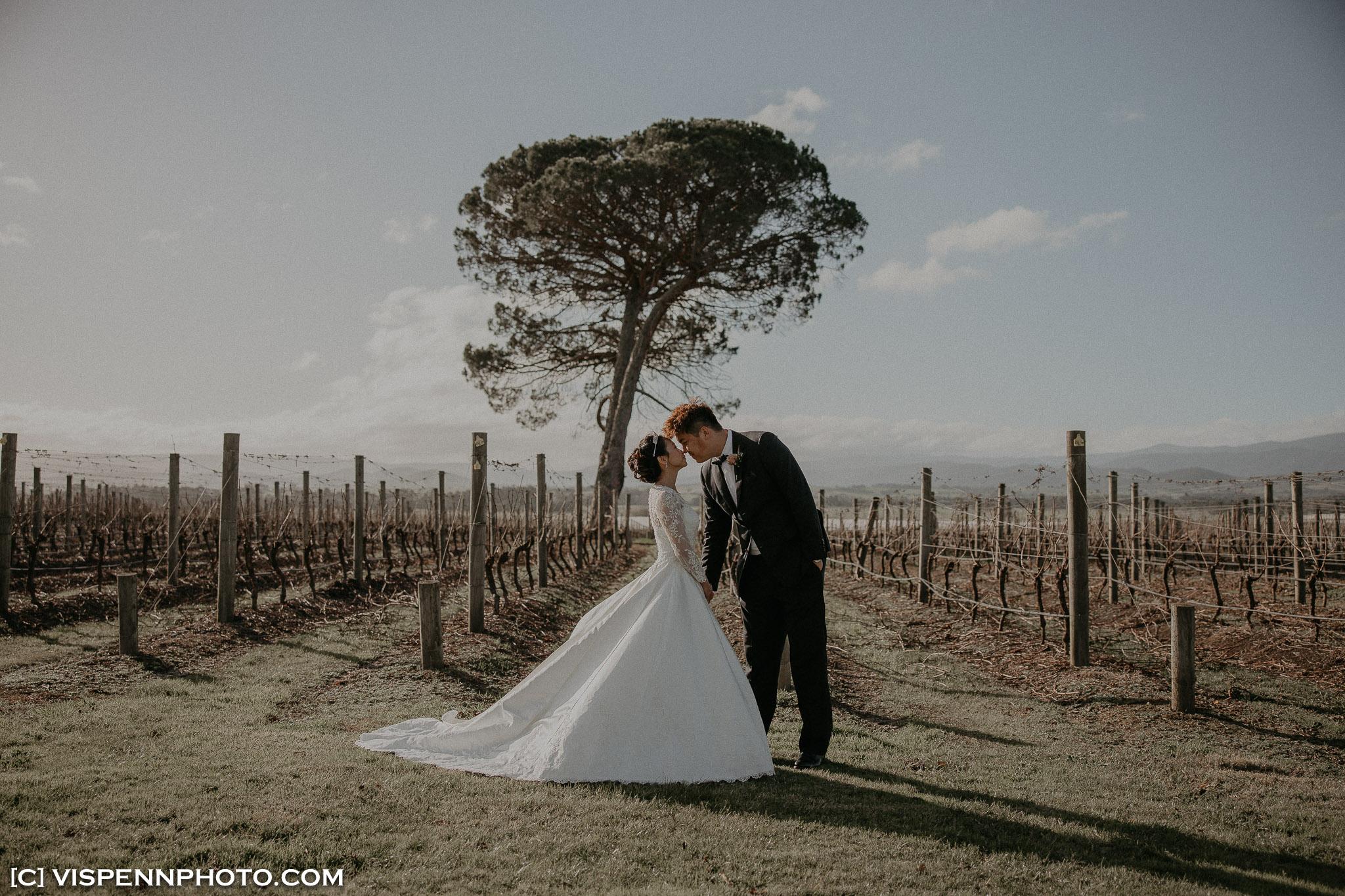 WEDDING DAY Photography Melbourne VISPENN 墨尔本 婚礼跟拍 婚礼摄像 婚礼摄影 结婚照 登记照 CoreyCoco 1P 02269 EOSR VISPENN
