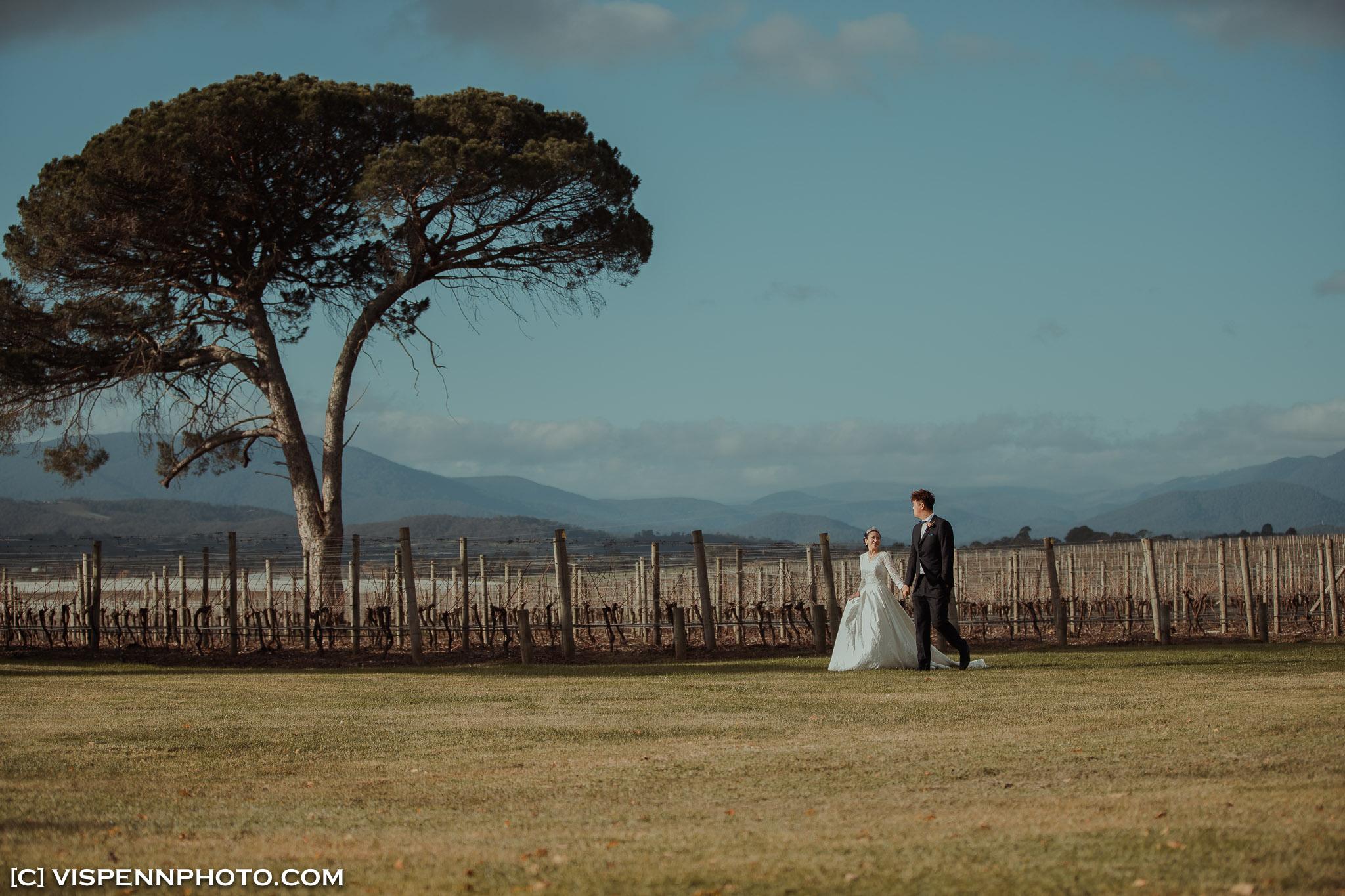 WEDDING DAY Photography Melbourne VISPENN 墨尔本 婚礼跟拍 婚礼摄像 婚礼摄影 结婚照 登记照 CoreyCoco 3P 07654 1DX VISPENN
