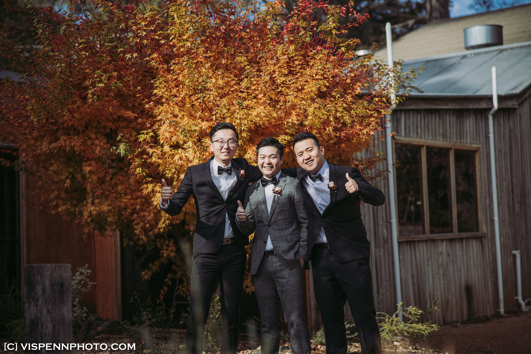 WEDDING DAY Photography Melbourne VISPENN 墨尔本 婚礼跟拍 婚礼摄像 婚礼摄影 结婚照 登记照 DominicHelen 1P 1905 EOSR VISPENN