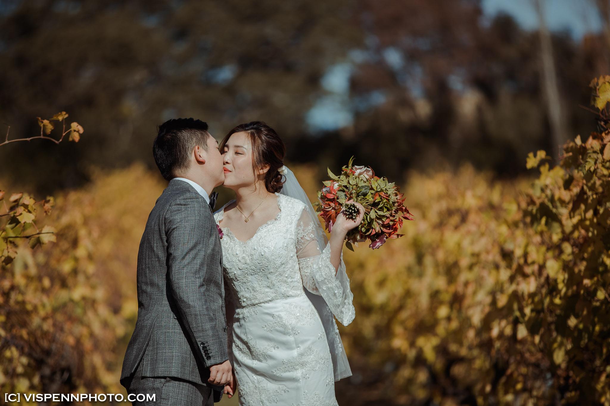 WEDDING DAY Photography Melbourne VISPENN 墨尔本 婚礼跟拍 婚礼摄像 婚礼摄影 结婚照 登记照 DominicHelen 2P 5965 1DX2 VISPENN