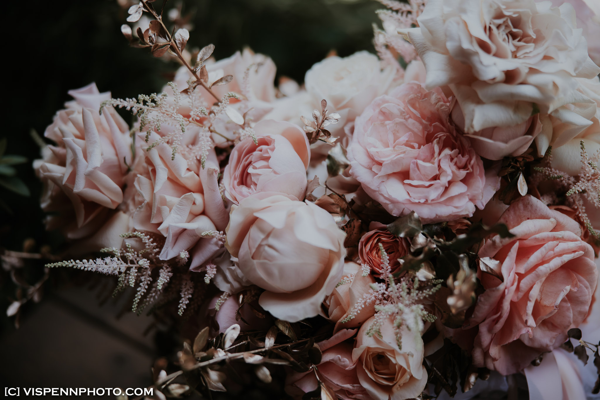 WEDDING DAY Photography Melbourne VISPENN 墨尔本 婚礼跟拍 婚礼摄像 婚礼摄影 结婚照 登记照 ElitaPB 03923 1P EOSR VISPENN