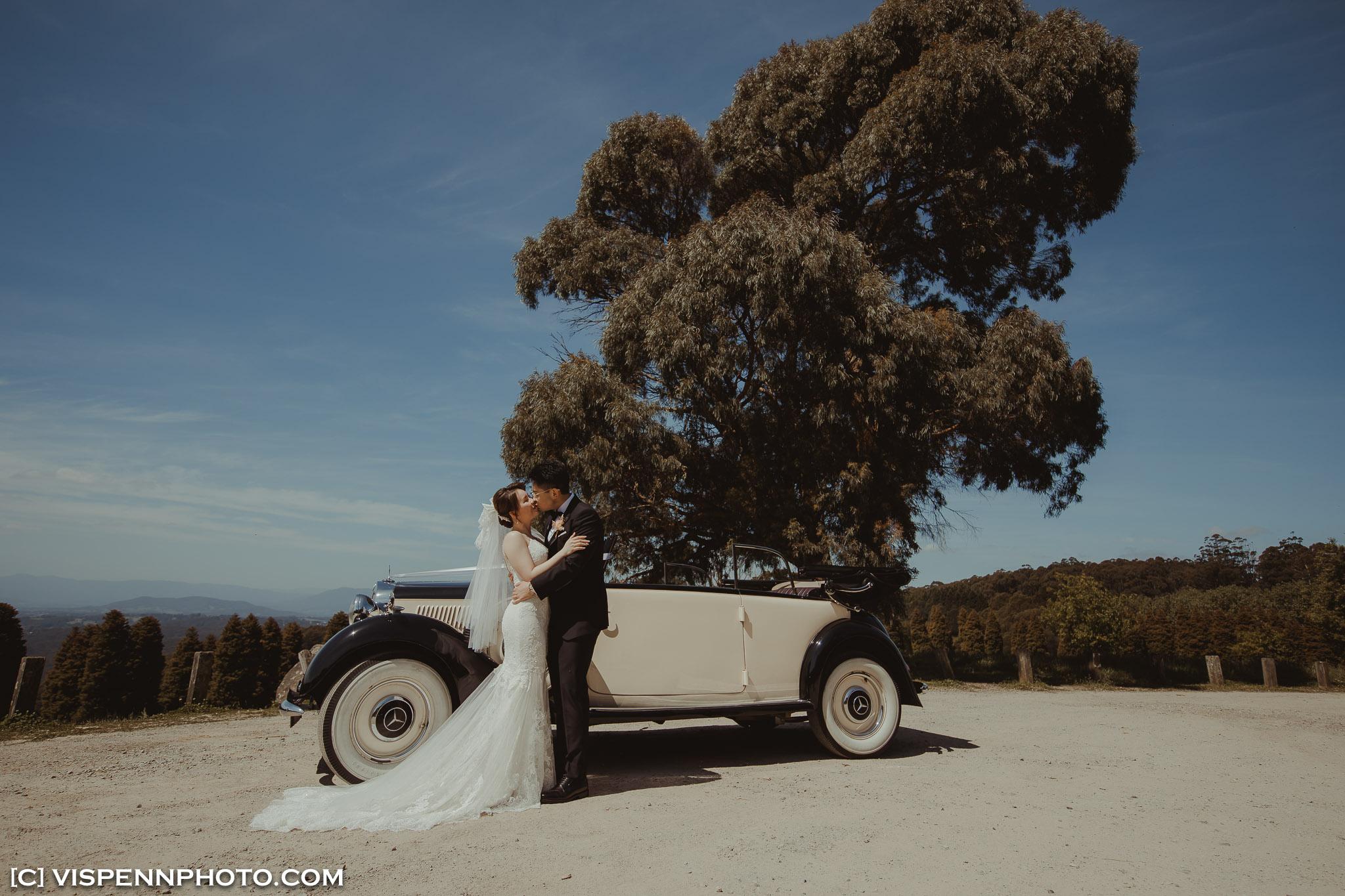 WEDDING DAY Photography Melbourne VISPENN 墨尔本 婚礼跟拍 婚礼摄像 婚礼摄影 结婚照 登记照 ElitaPB 05865 3P 5D4 VISPENN