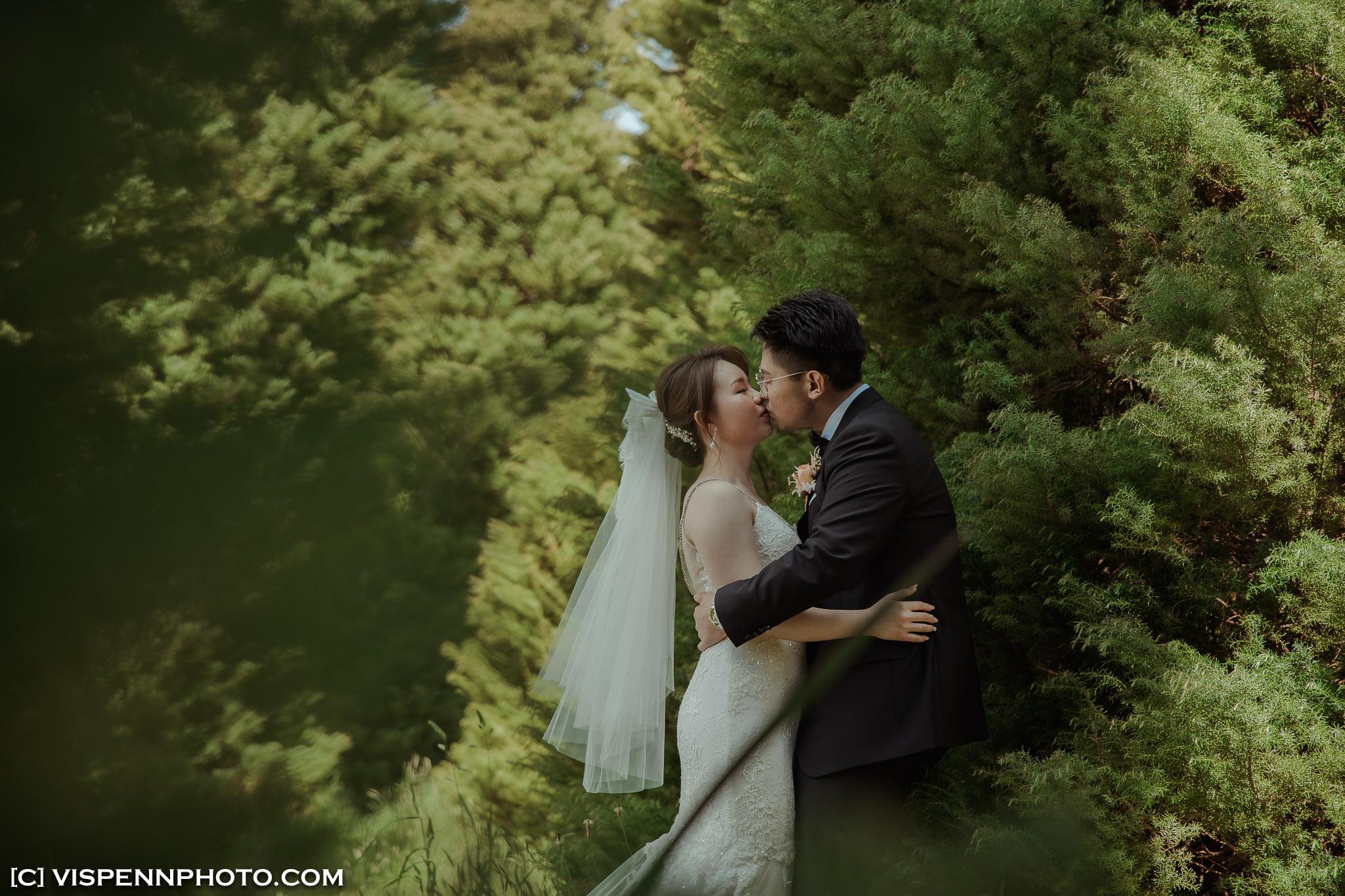 WEDDING DAY Photography Melbourne VISPENN 墨尔本 婚礼跟拍 婚礼摄像 婚礼摄影 结婚照 登记照 ElitaPB 06385 1P EOSR VISPENN