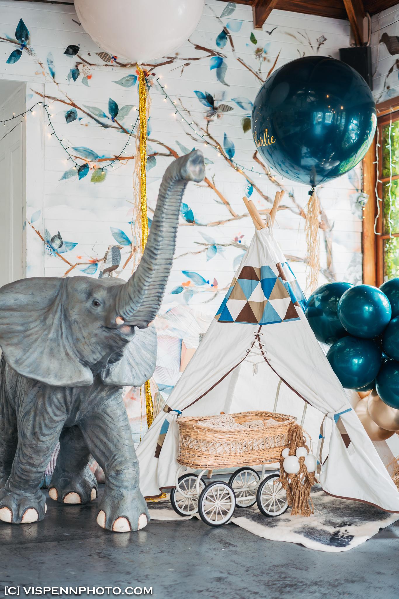 Melbourne Baby Family Birthday Party Photographer 墨尔本 百日宴 满月宴 周岁宴 摄影 VISPENN Charlie 0059 Sony VISPENN