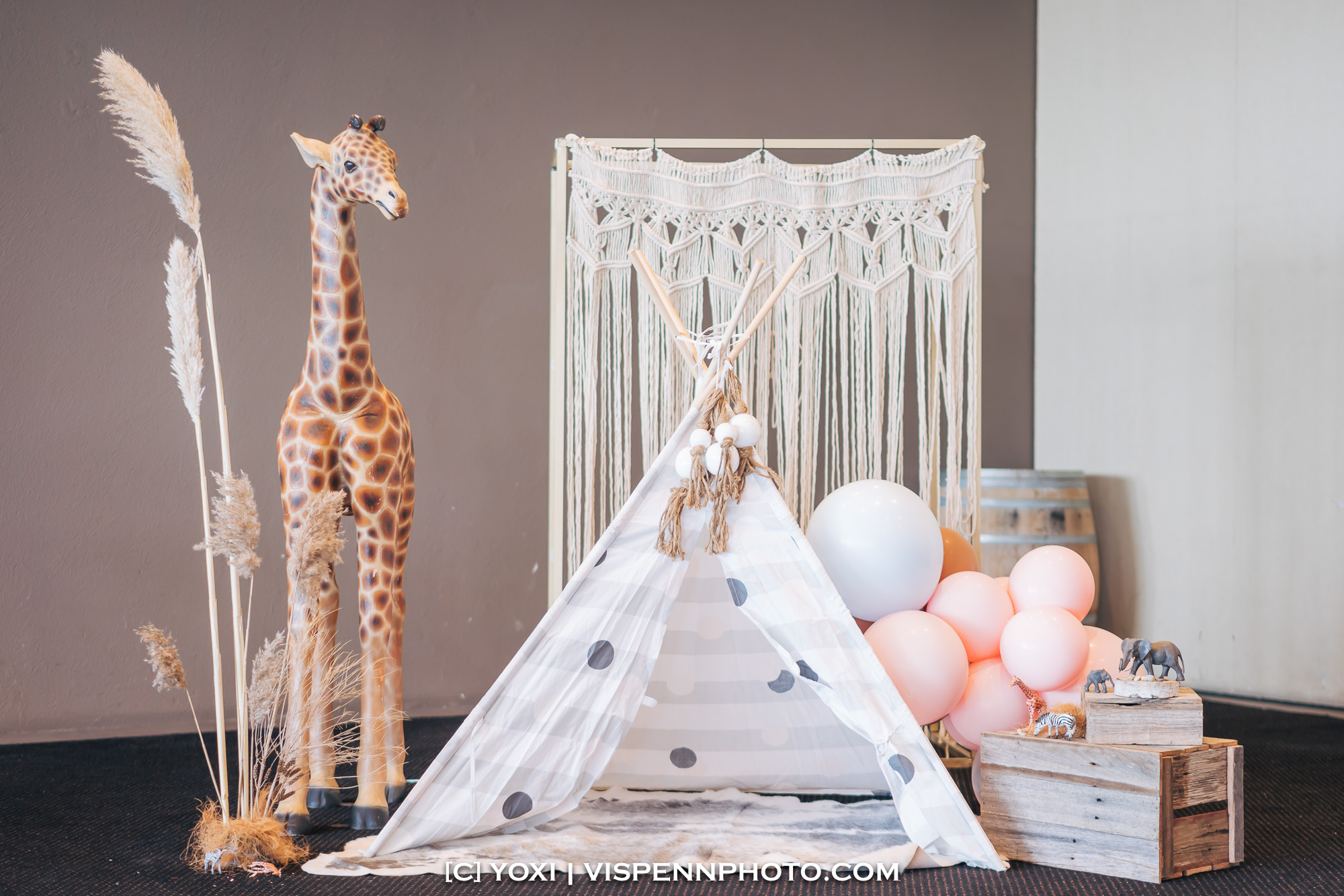 Melbourne Baby Family Birthday Party Photographer 墨尔本 百日宴 满月宴 周岁宴 摄影 VISPENN VISPENN 0045