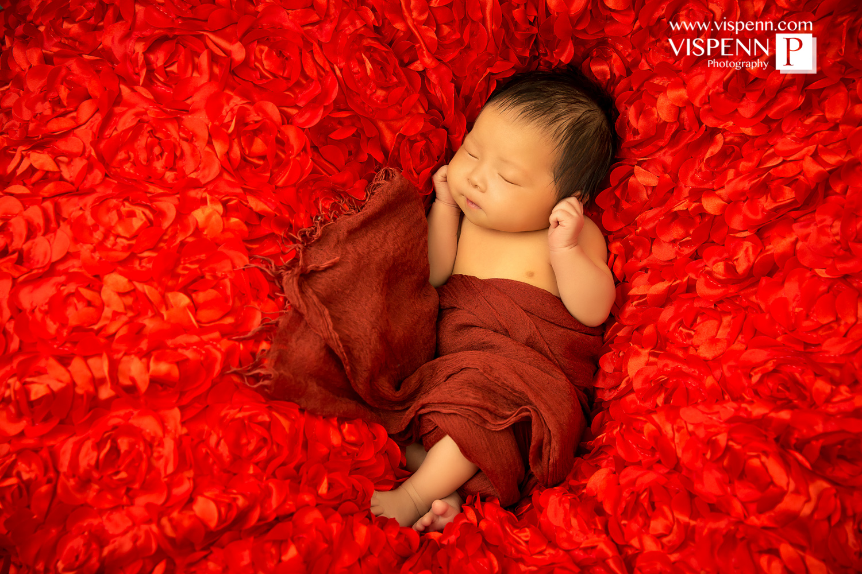 Melbourne Newborn Baby Family Photo BaoBao VISPENN 墨尔本 儿童 宝宝 百天照 满月照 孕妇照 全家福 100DAYS 1623