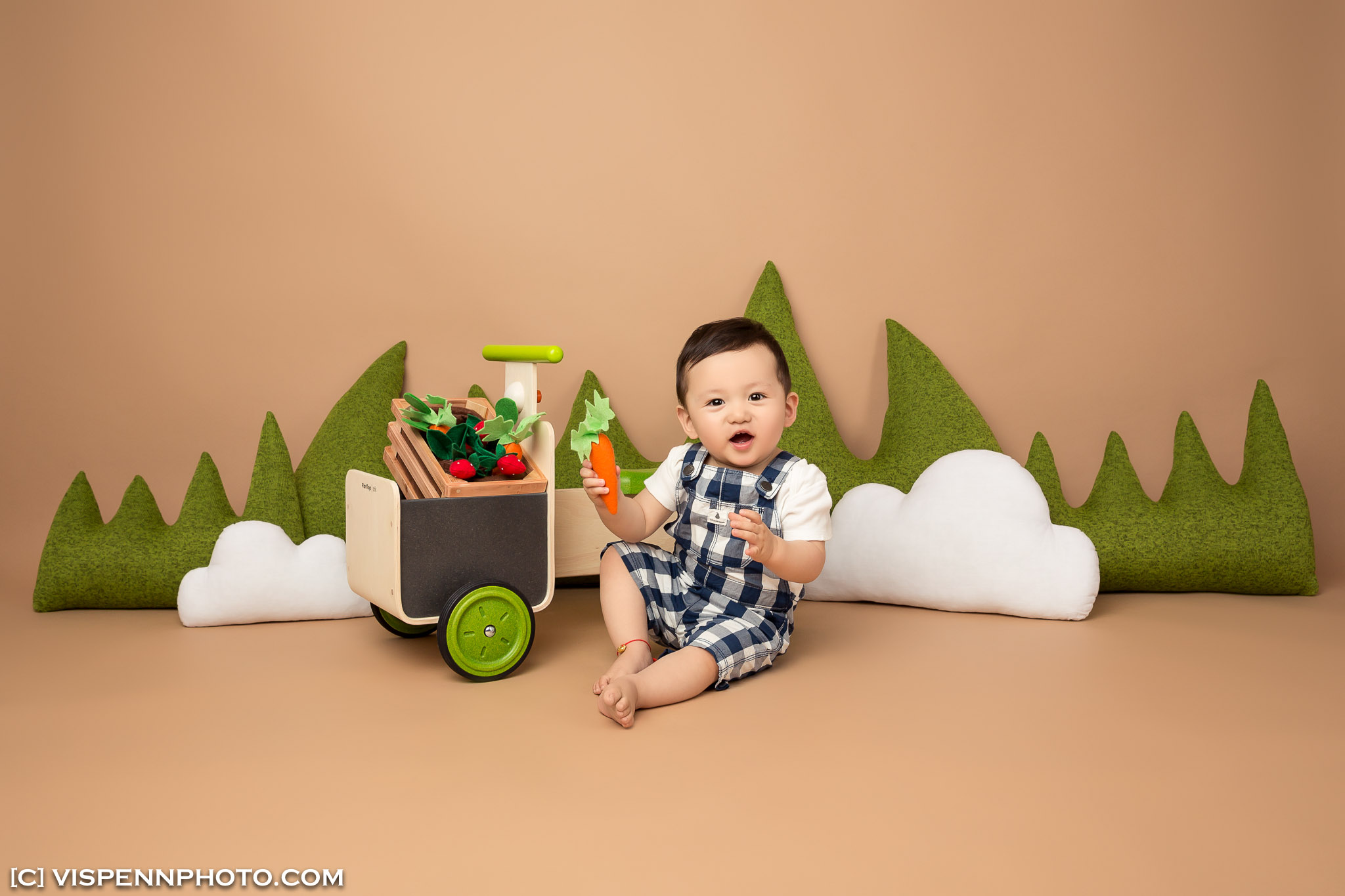 Melbourne Newborn Baby Family Photo BaoBao VISPENN 墨尔本 儿童 宝宝 百天照 满月照 孕妇照 全家福 KIDS VISPENN IvyZou 1635