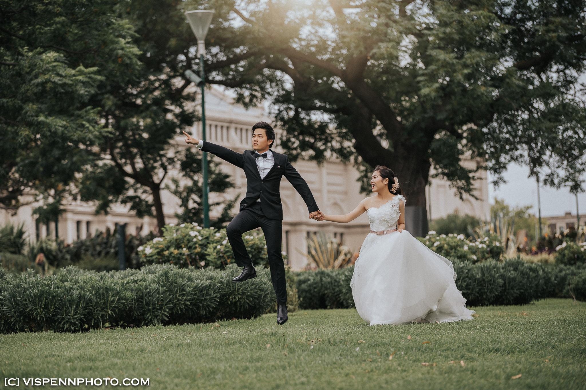 PRE WEDDING Photography Melbourne VISPENN 墨尔本 婚纱照 结婚照 婚纱摄影 1DX 1604