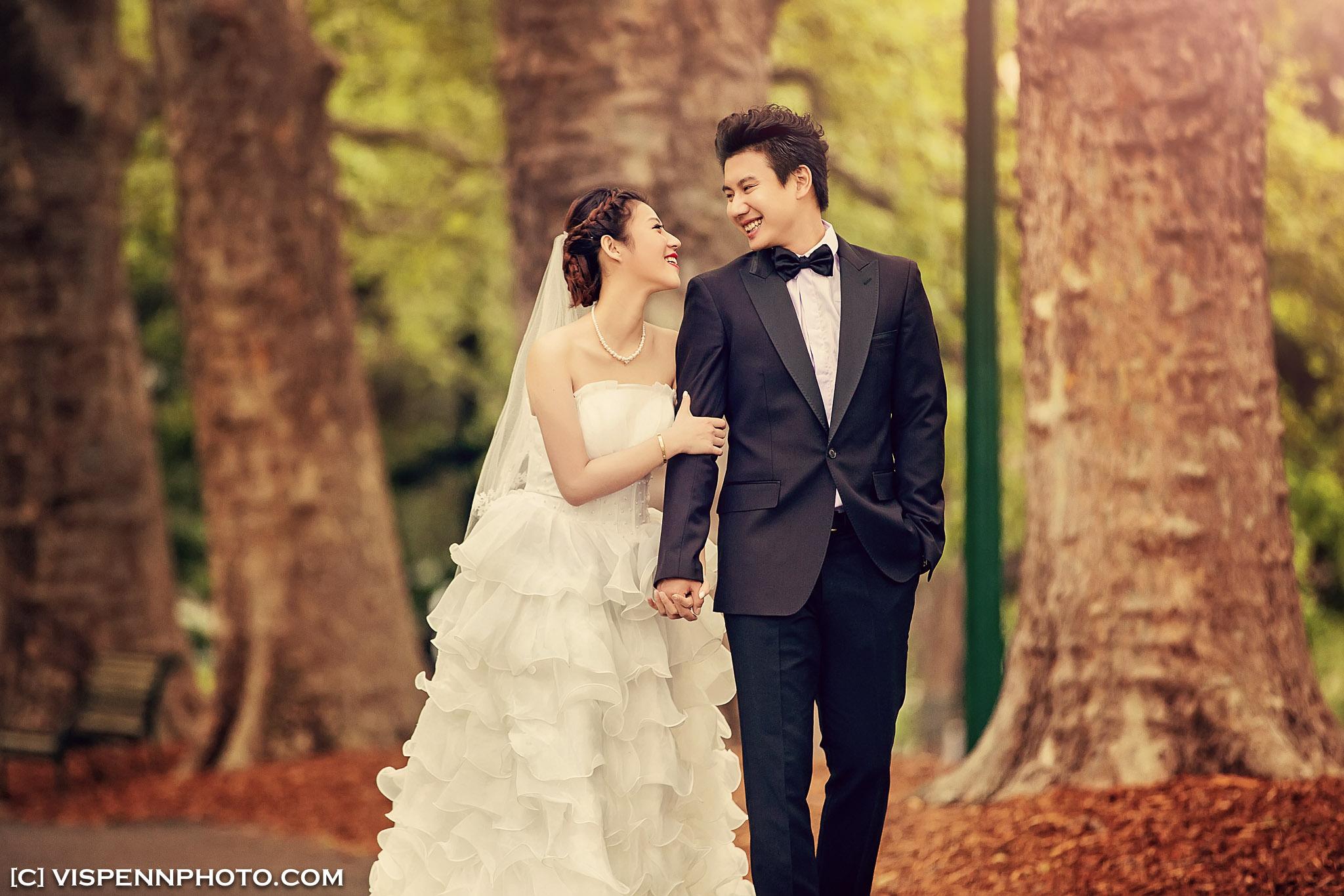 PRE WEDDING Photography Melbourne VISPENN 墨尔本 婚纱照 结婚照 婚纱摄影 5D3 3490