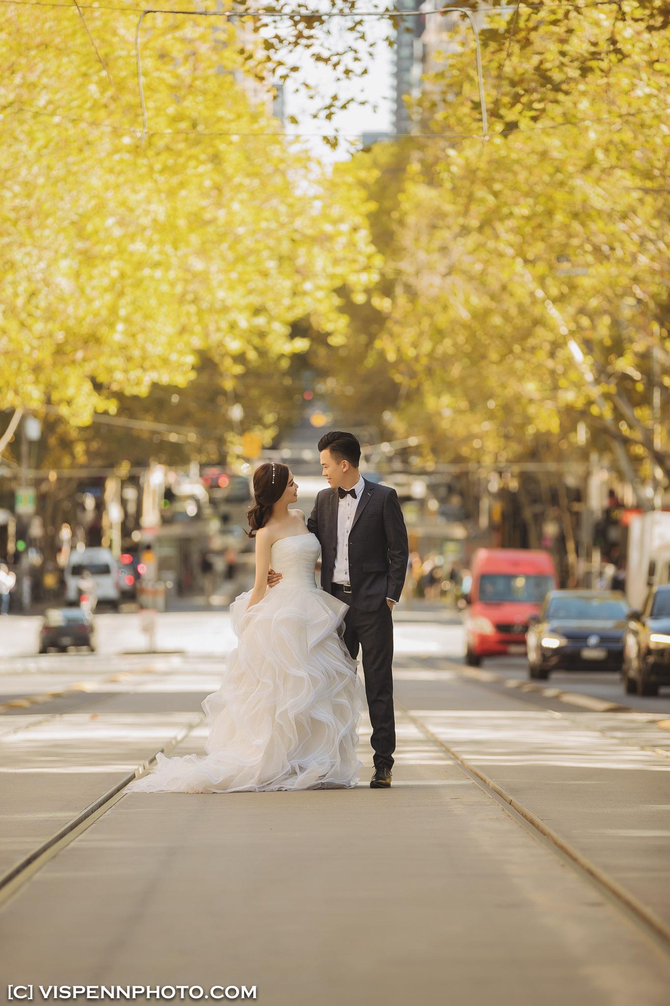 PRE WEDDING Photography Melbourne VISPENN 墨尔本 婚纱照 结婚照 婚纱摄影 AndyCHEN 3554 1DX VISPENN