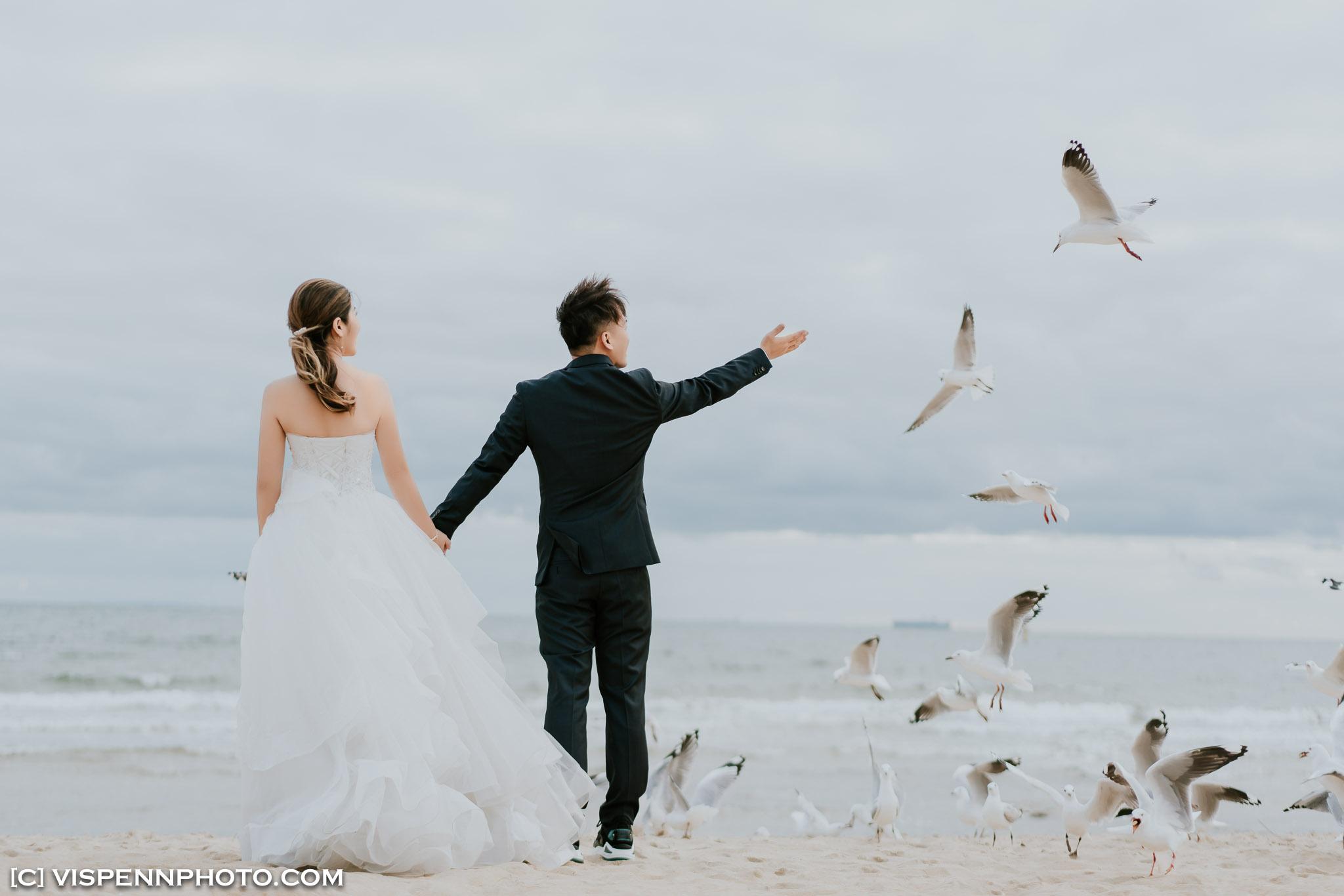 PRE WEDDING Photography Melbourne VISPENN 墨尔本 婚纱照 结婚照 婚纱摄影 GiGi 3204 A7R3 VISPENN