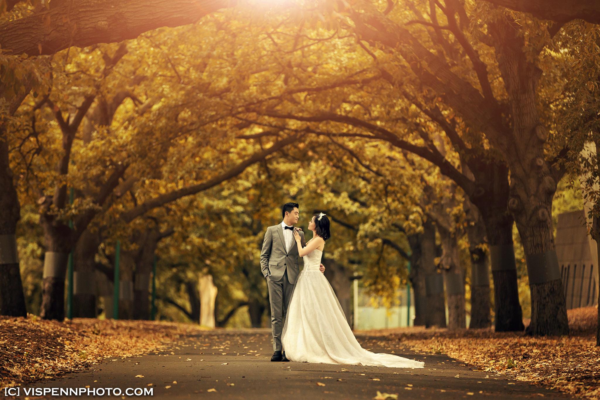 PRE WEDDING Photography Melbourne VISPENN 墨尔本 婚纱照 结婚照 婚纱摄影 Pauline 2163