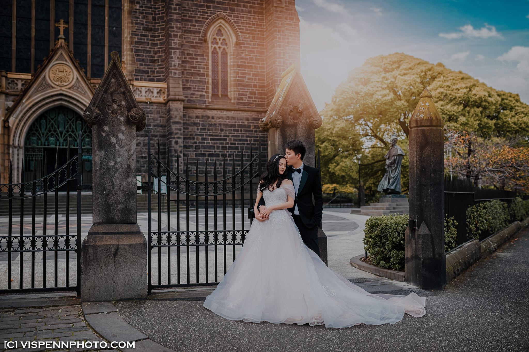 PRE WEDDING Photography Melbourne VISPENN 墨尔本 婚纱照 结婚照 婚纱摄影 VISPENN P5D4 0529