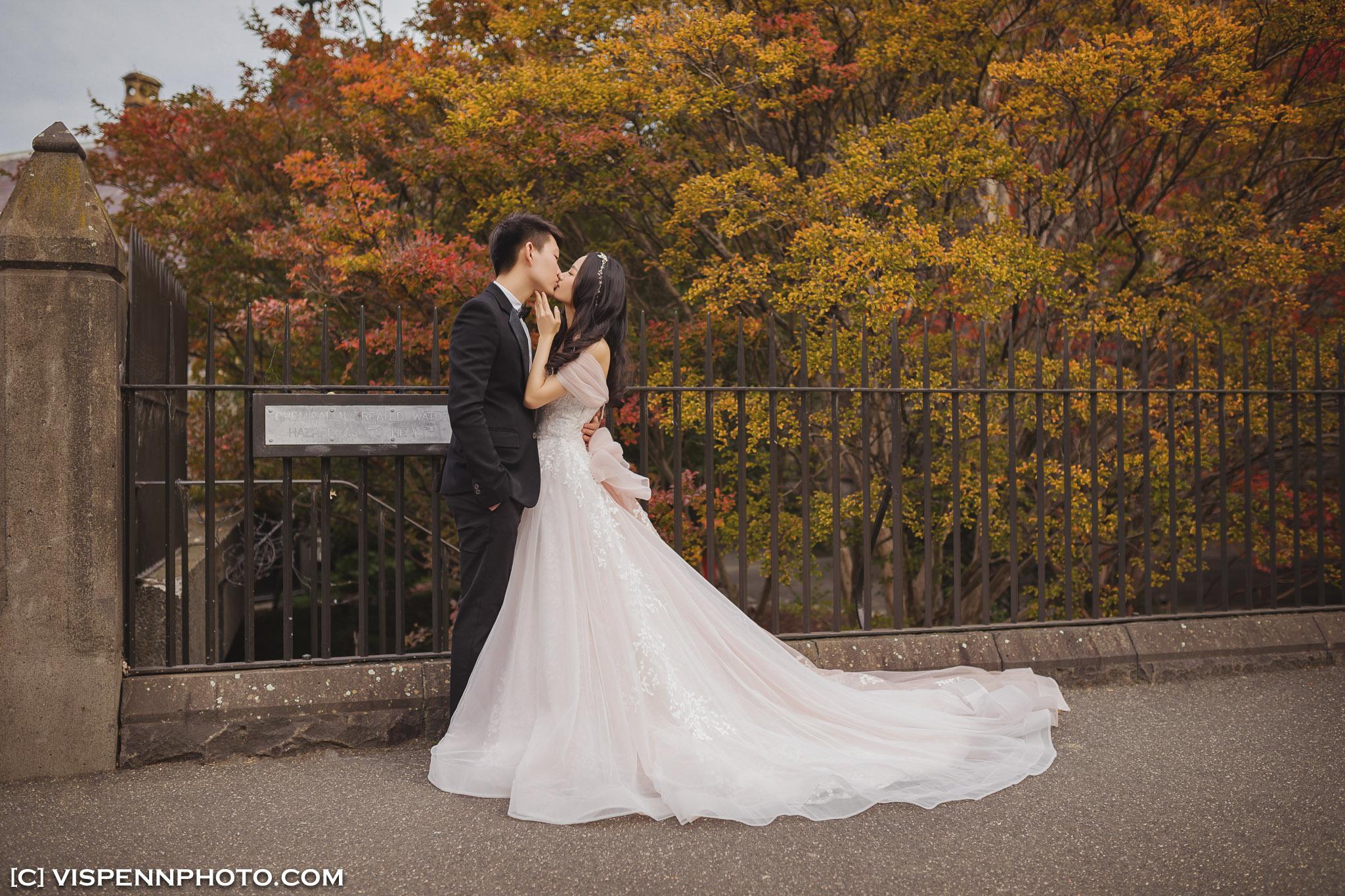 PRE WEDDING Photography Melbourne VISPENN 墨尔本 婚纱照 结婚照 婚纱摄影 VISPENN P5D4 1088