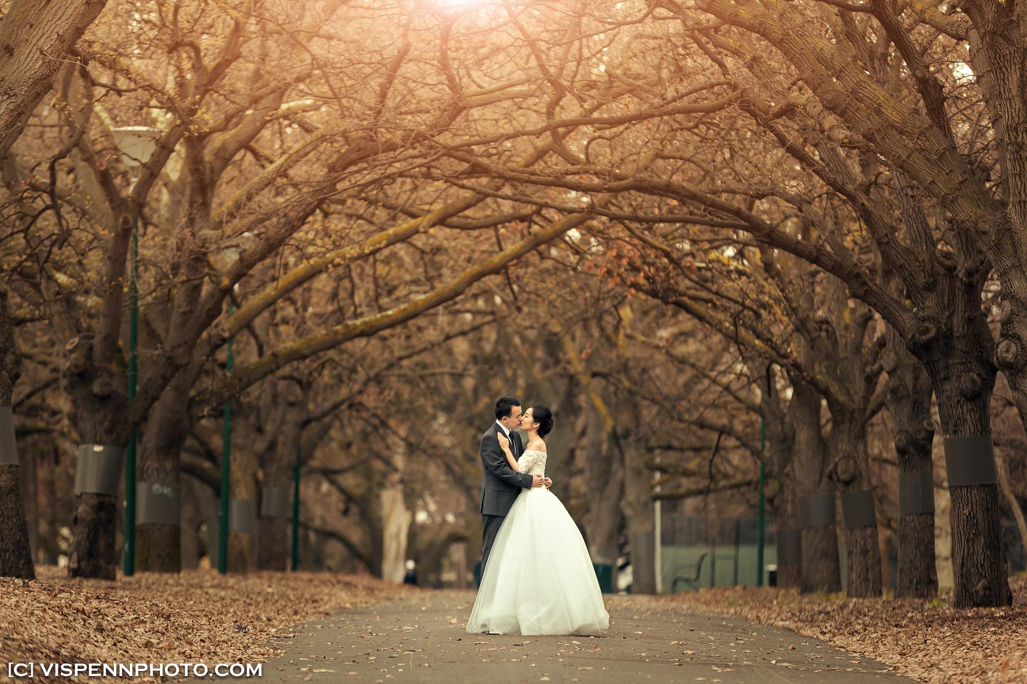 PRE WEDDING Photography Melbourne VISPENN 墨尔本 婚纱照 结婚照 婚纱摄影 VISPENN XXD 0055