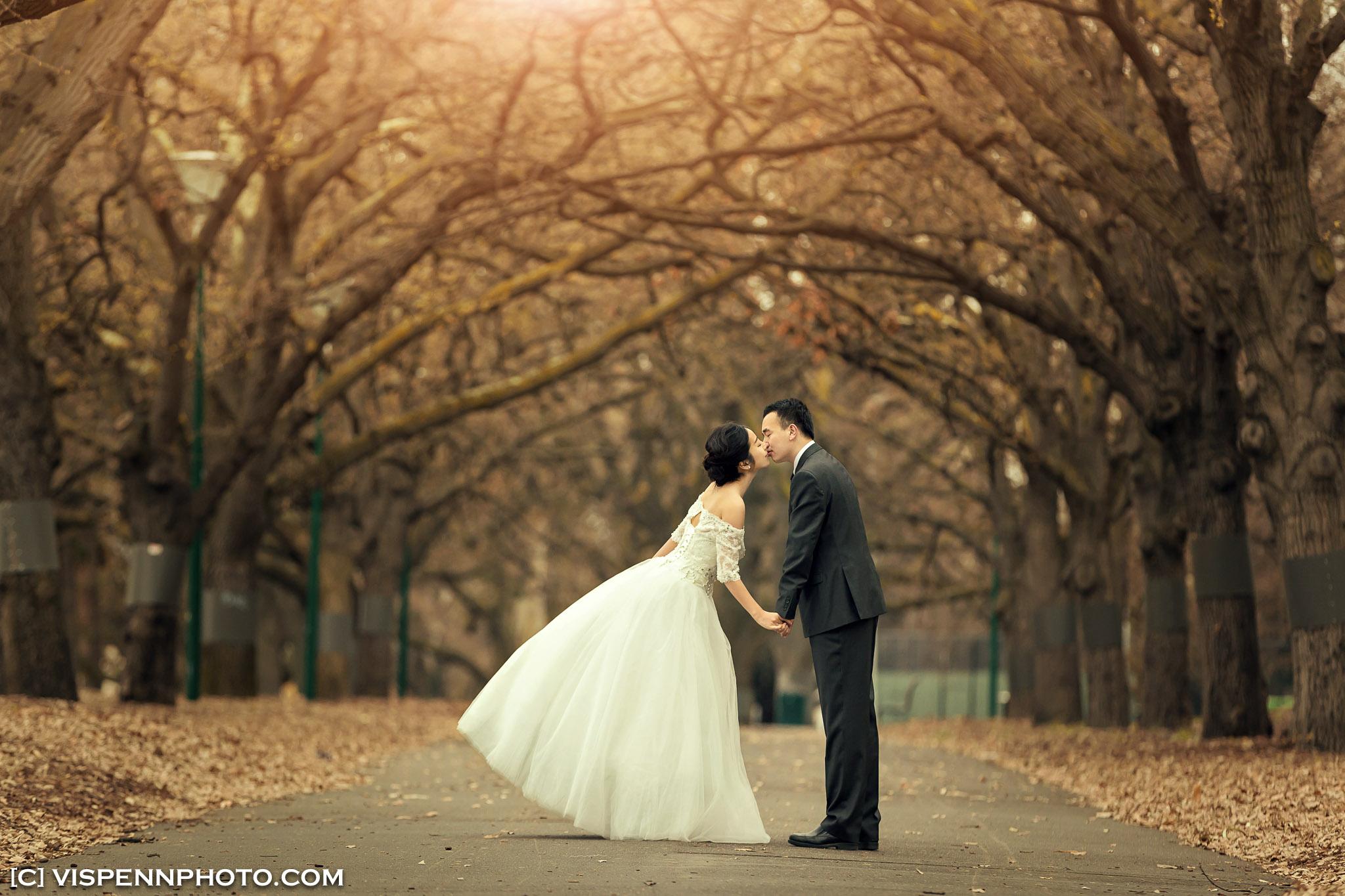 PRE WEDDING Photography Melbourne VISPENN 墨尔本 婚纱照 结婚照 婚纱摄影 VISPENN XXD 0476