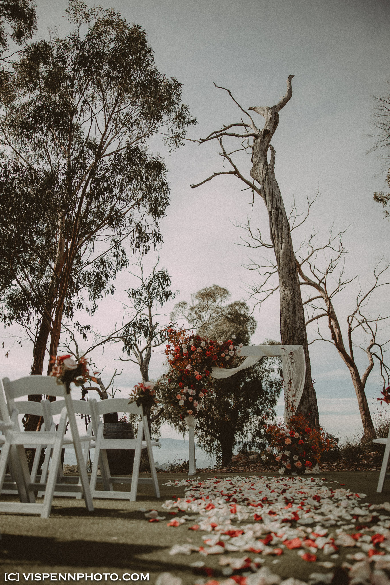 WEDDING DAY Photography Melbourne VISPENN 墨尔本 婚礼跟拍 婚礼摄像 婚礼摄影 结婚照 登记照 DominicHelen 1P 2652 EOSR VISPENN