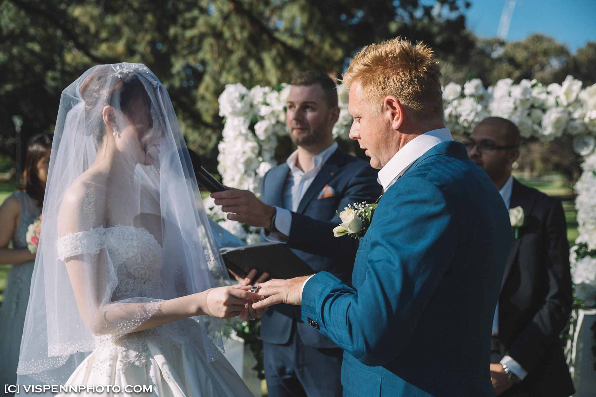 WEDDING DAY Photography Melbourne VISPENN 墨尔本 婚礼跟拍 婚礼摄像 婚礼摄影 结婚照 登记照 VISPENN 1P 1DX 01300