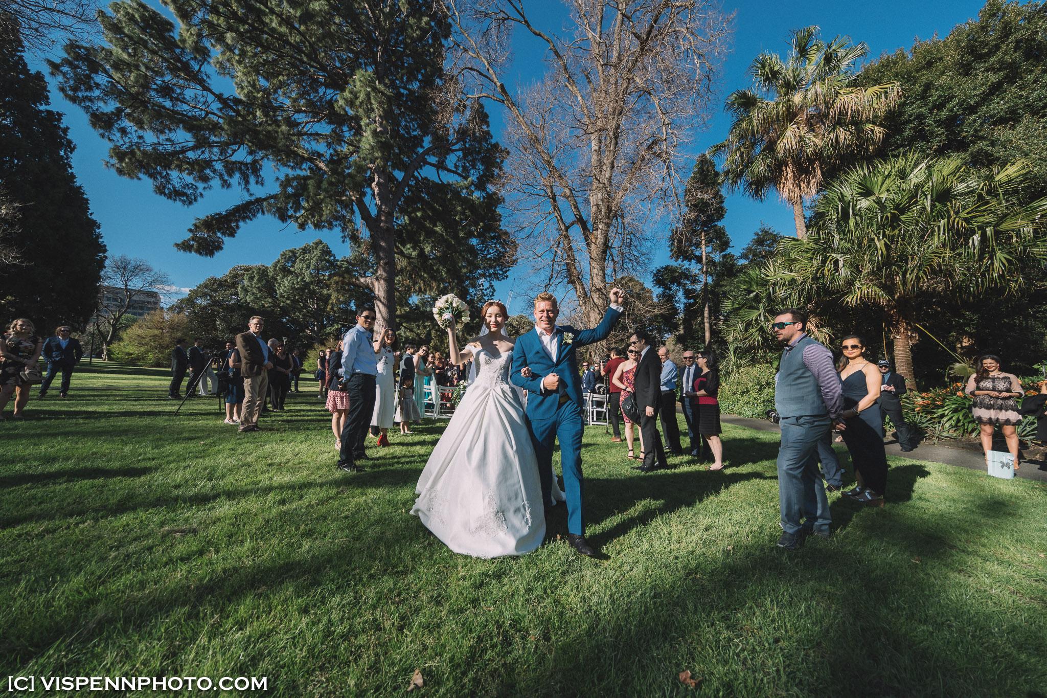 WEDDING DAY Photography Melbourne VISPENN 墨尔本 婚礼跟拍 婚礼摄像 婚礼摄影 结婚照 登记照 VISPENN 1P 1DX 01834